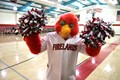 Mascot Sam the Falcon
